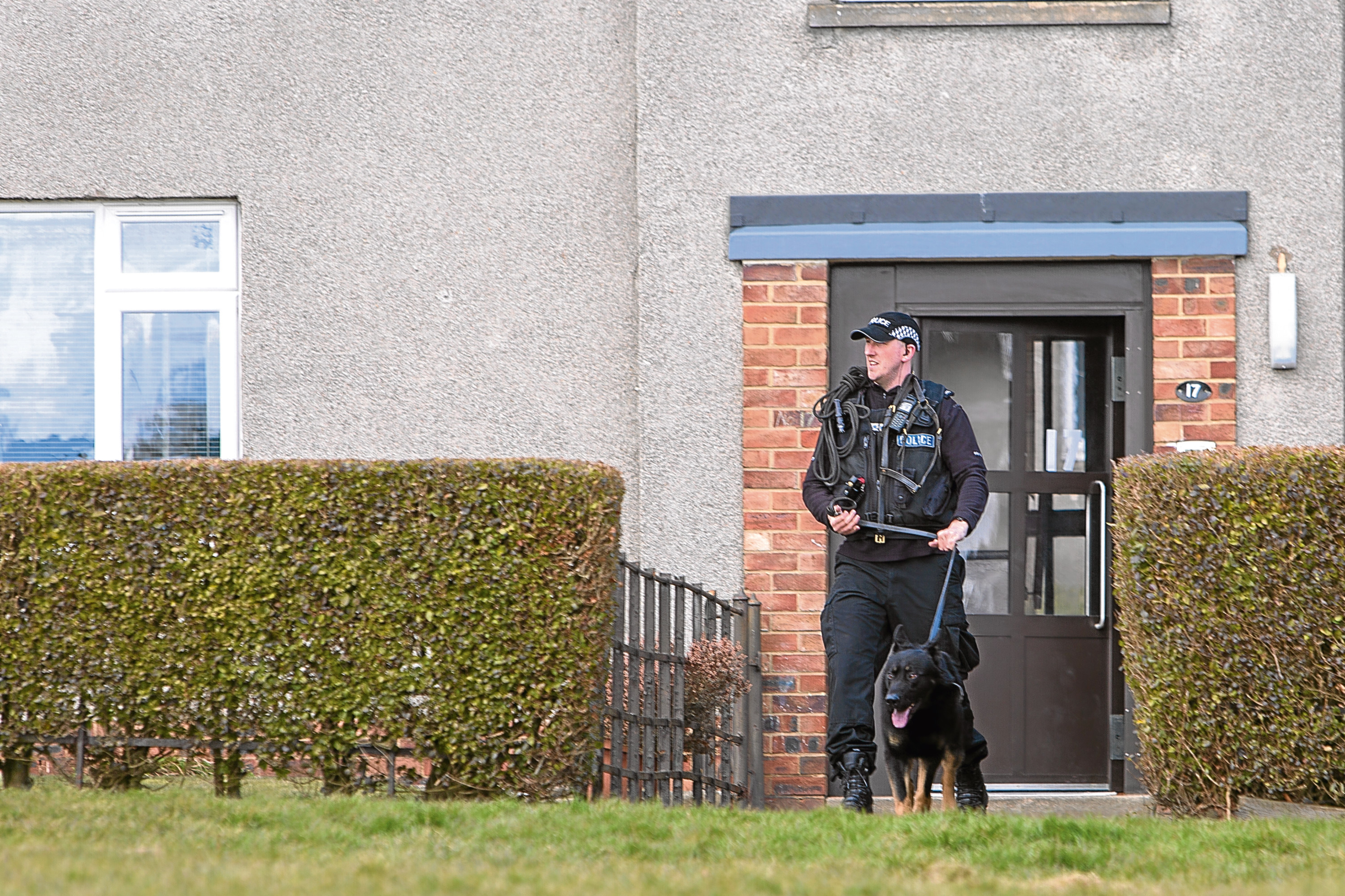 Police dog units search properties in the St Mary's area of Dundee on Thursday.