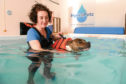 Vikki Culley and her dog Rubbi in the HydroPetz treatment pool