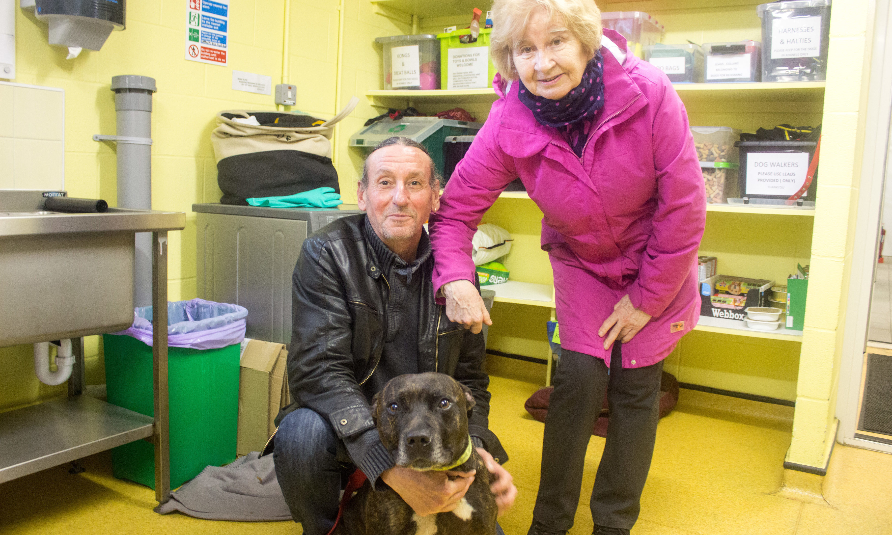 Val and Paul with Tyson, who they are both trying to help find a home.