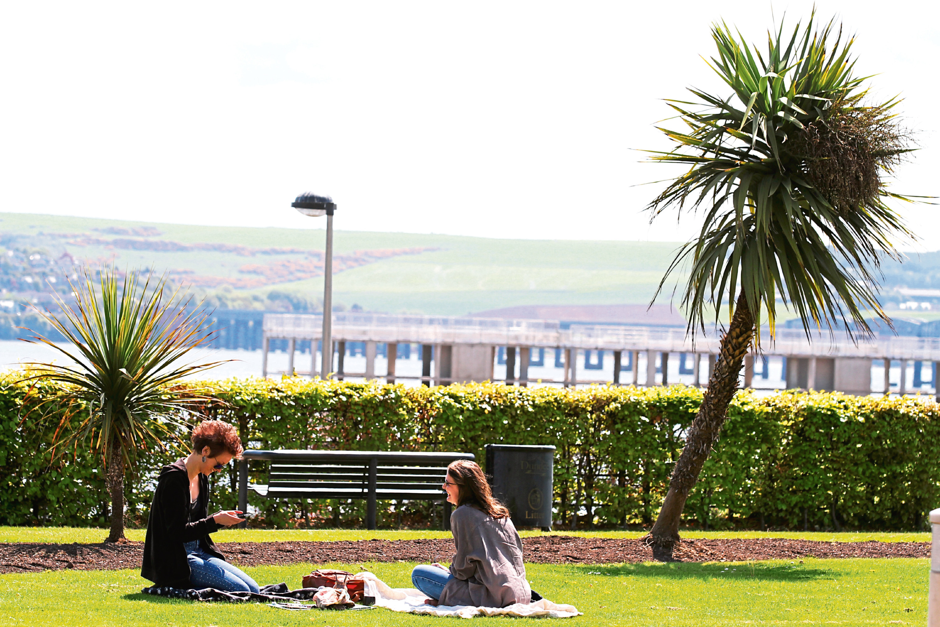 Two women have a picnic in the sun amongst the palm trees at Seabraes on Perth Road.
