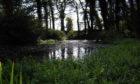 Silverburn Park pond, Leven