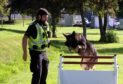 PC Peter Gargan and dog Dale have scooped a top police award