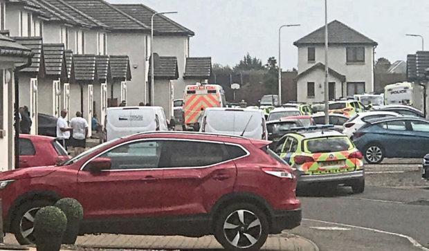 Police at Corbie Wood on Sunday.