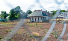 The once popular Dalkeith Road tennis club has become overgrown and unsed in recent years.
