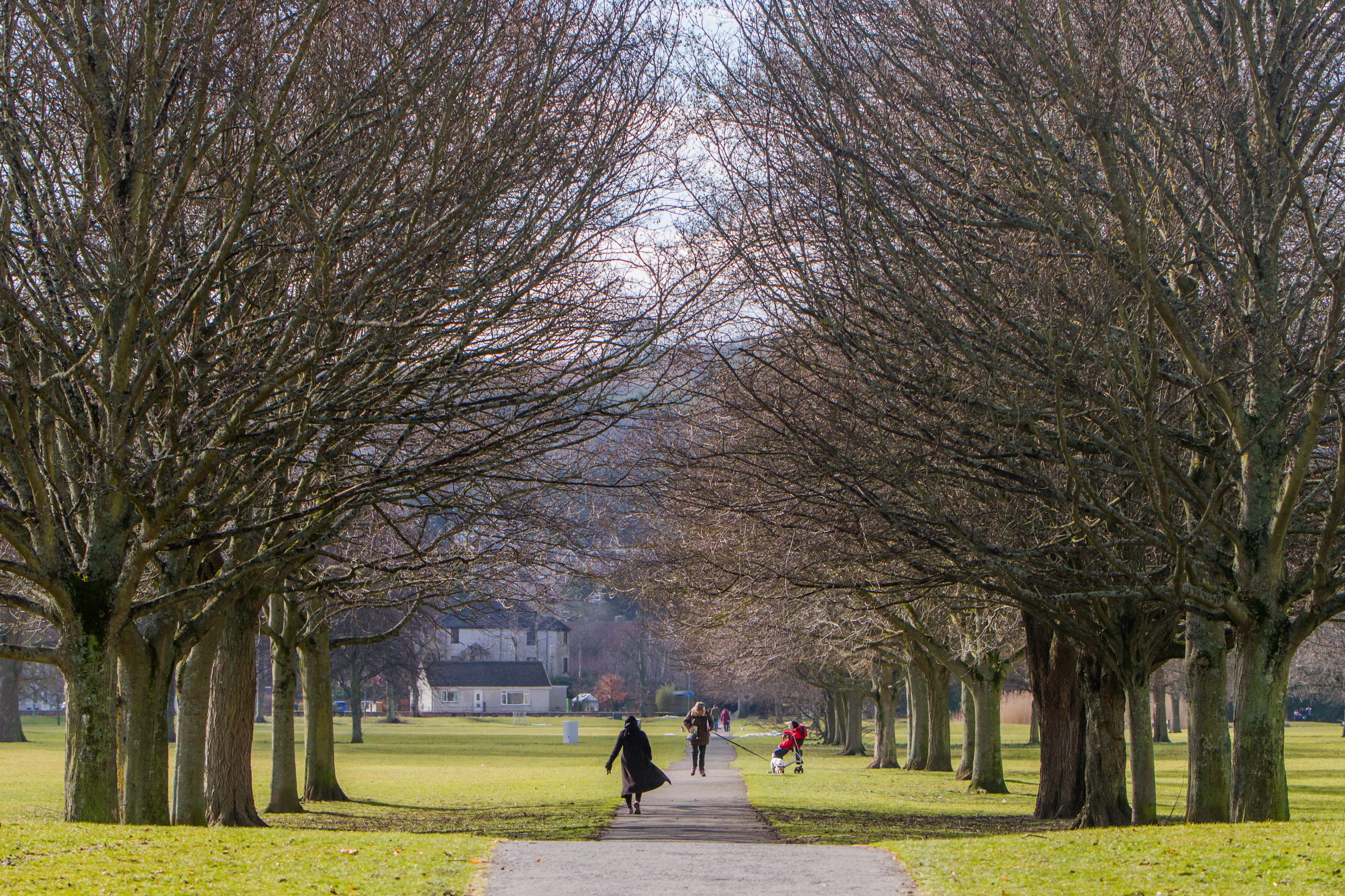 South Inch, Perth (stock image)