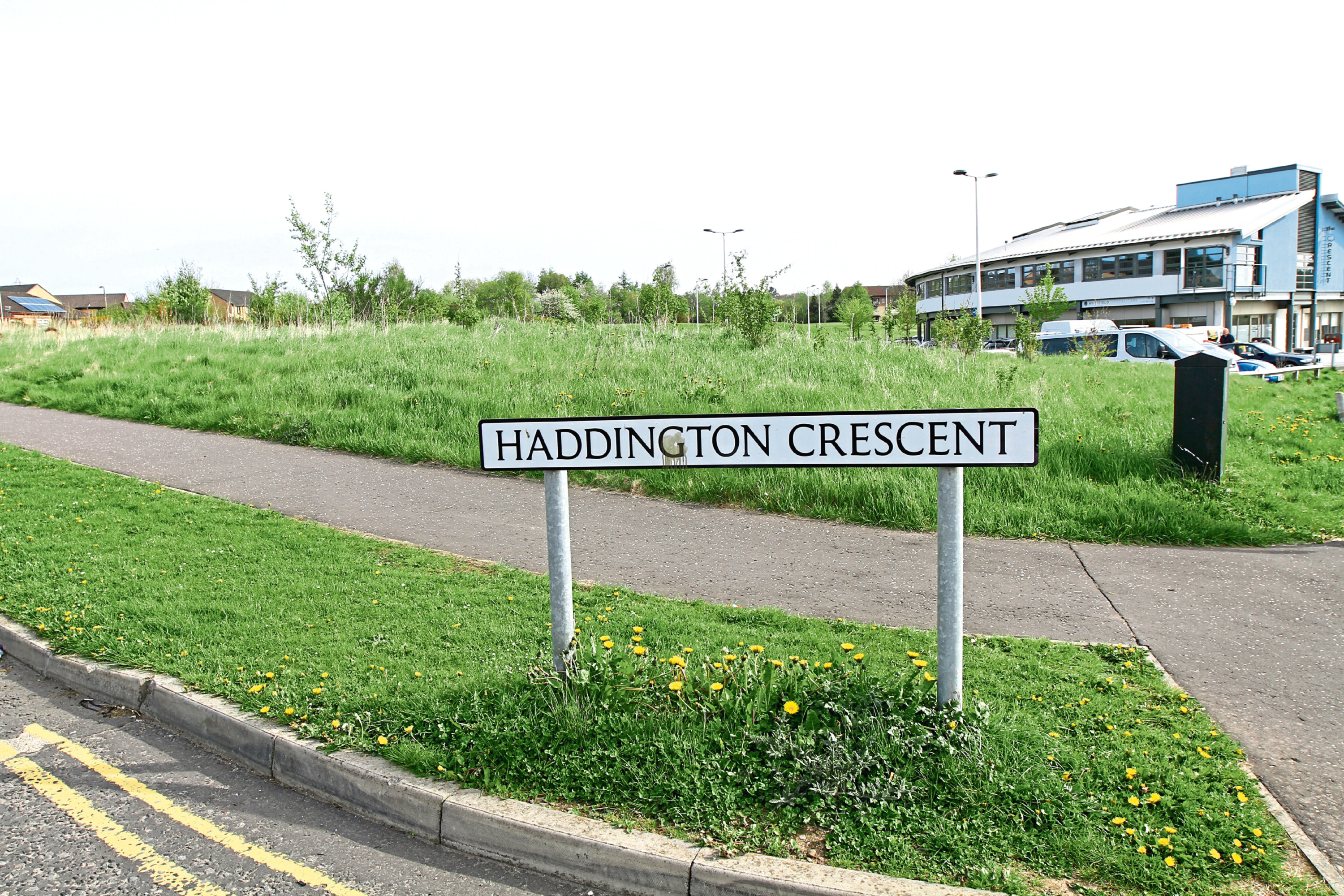 The grassy area off Haddington Crescent is the proposed site for the homes.