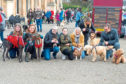 Dogs and owners line up for the winter walk in the park