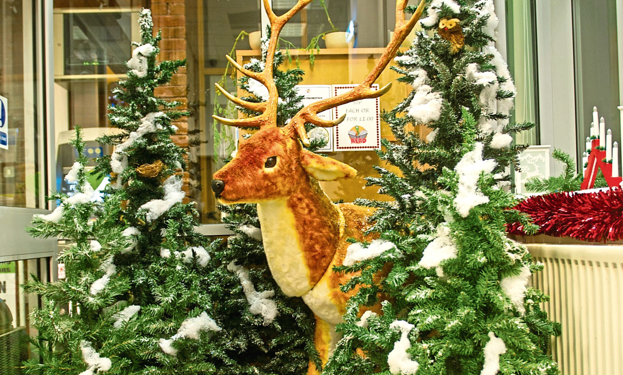 One of the Christmas Wonderland displays
