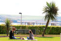 Two women have a picnic among the palm trees on  Perth Road in May last year