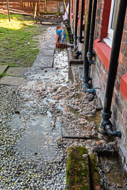 The sewage problems have also affected gardens in Dens Road