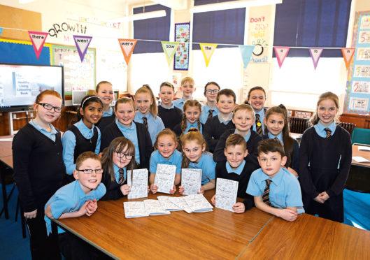 St Mary's Primary School P6.