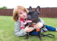 """Elizabeth McKelvie with  her french bulldog """"Louie"""" who got the wrong eye operated on at Wallace Vets Broughty Ferry"""