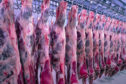 Carcasses of beef hang on hooks at a slaughterhouse.