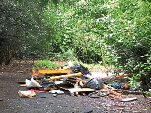 Derek Taylor has hit out at flytippers who dumped commercial waste at Camperdown Park.