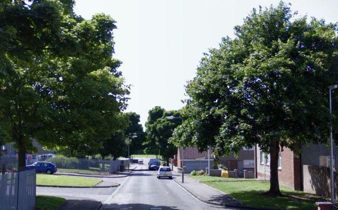 Dee Gardens, Dundee (stock image)