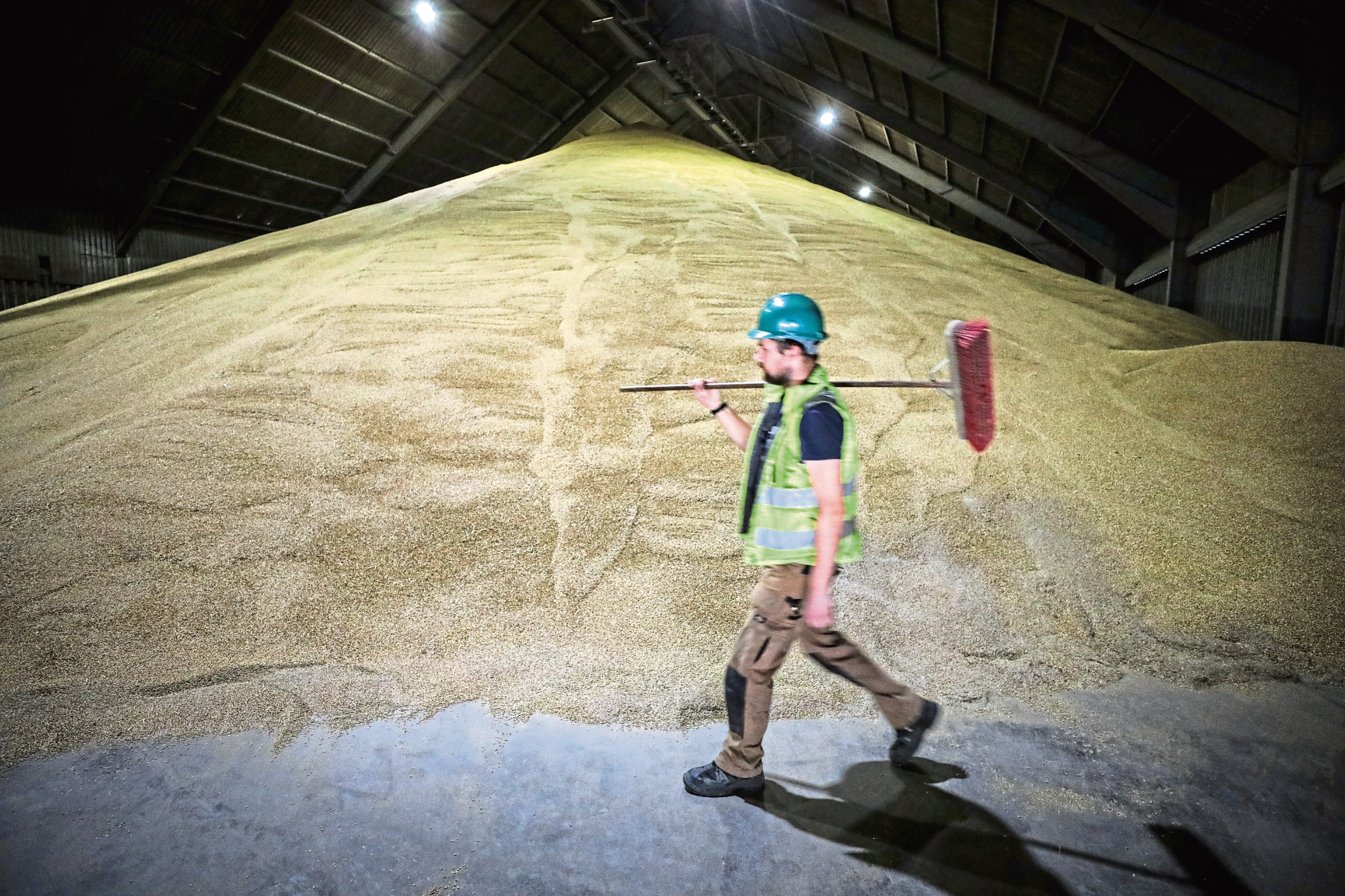 Forth Ports (Dundee) have had a hectic time with grain drying and storing of malting barley.