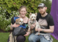 Vicky & Ryan Carle with their dogs Cubby & Megane.