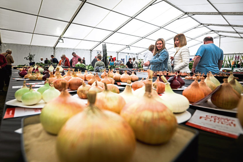 The public mill around the food judging tent with giant onions.
