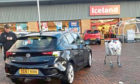 Shopper collided with parked car before fleeing the area.