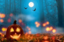 jack lantern in the halloween night istock pic for martel.