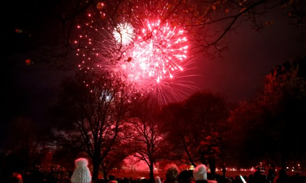 Part of the fireworks display at Baxter Park in 2018. Photo by Gareth Jennings/DCT Media.