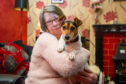 Frances West with Patch her Jack Russell terrier.