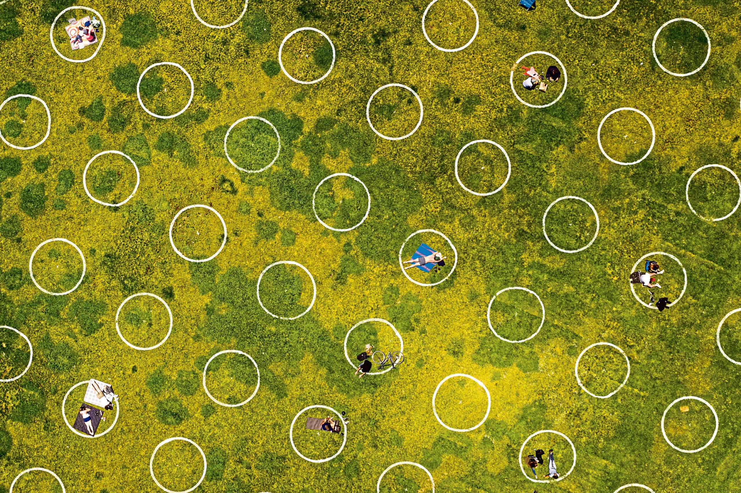 Social distancing circles marked in a San Francisco park.
