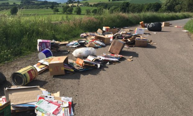 Some of the rubbish which was dumped between Auchterhouse and Newtyle.