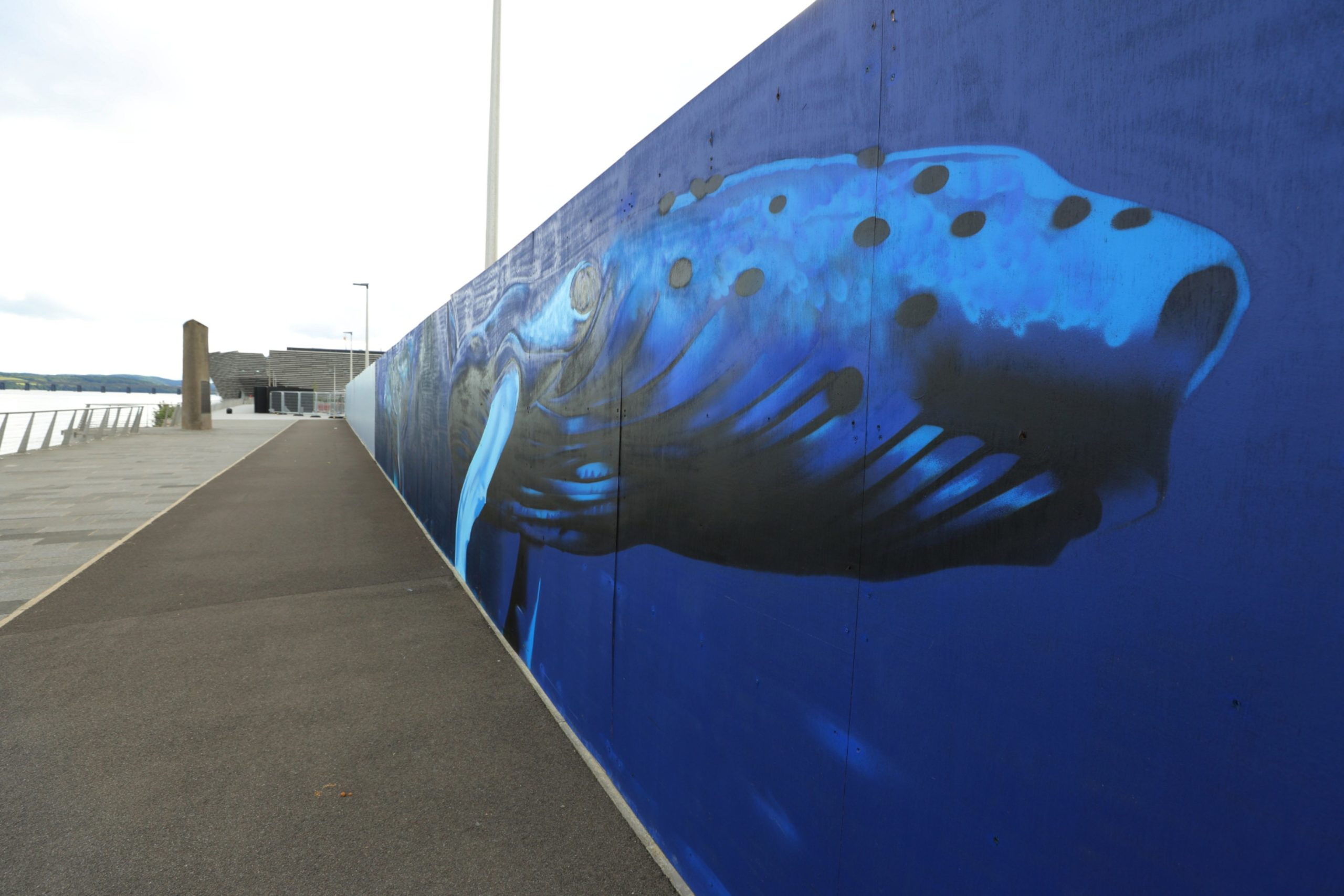 The mural of the Tay whale, in it's new location on the Waterfront in Dundee today. Saturday 11th July 2020 (Picture: Dougie Nicolson / DCT Media.)