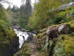 The Black Linn Falls at The Hermitage.