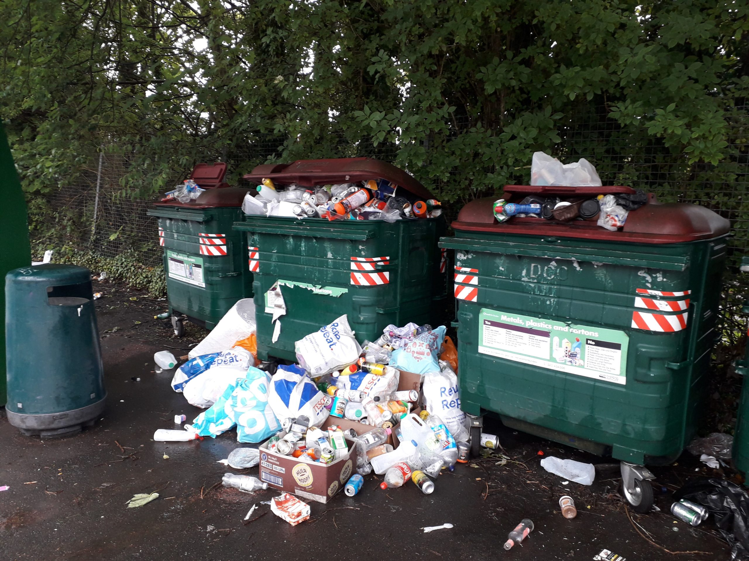 Overflowing Eurobins are a worry for residents across the city.