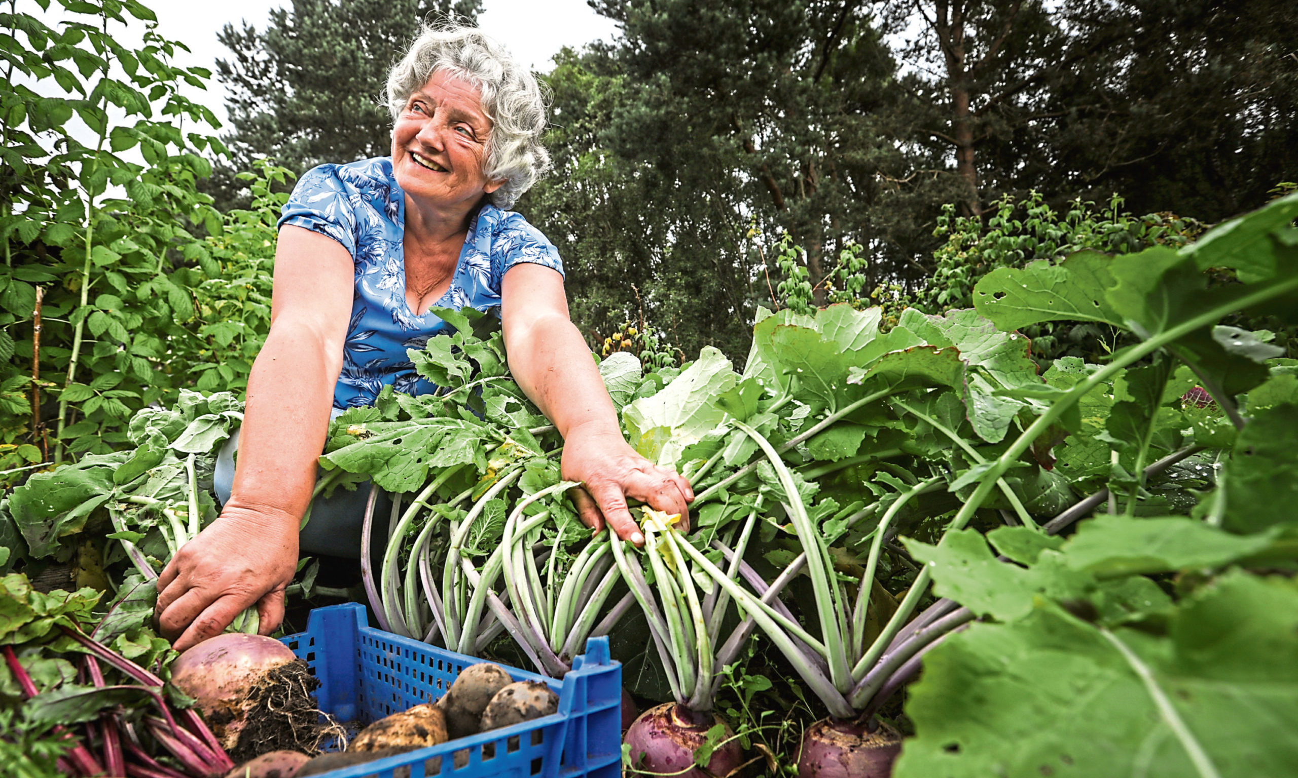 Linda Adams in her allotment with some of the root veg.