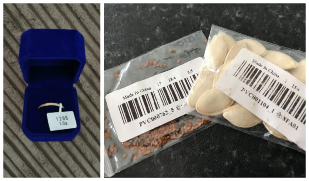 The ring received by Brechin woman Lauren Moir, and some seeds which have appeared in Scotland - both from a Chinese sender.
