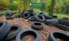 Dozens of tyres have been dumped at Templeton Woods. Photo by DCT Media.