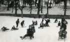 Sledging at Lochee Park in December 1973.