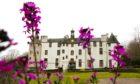 Dudhope Castle sale