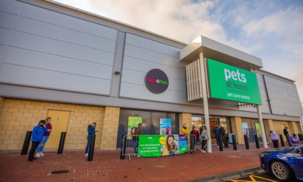 Pets At Home in Perth
