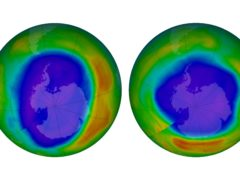 Areas of low ozone above Antarctica (NASA via AP)