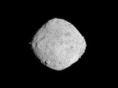 The asteroid Bennu (NASA/Goddard/University of Arizona via AP)