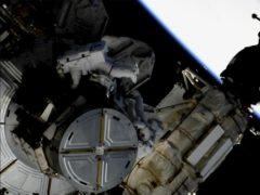 Astronauts Anne McClain and Nick Hague (NASA via AP)