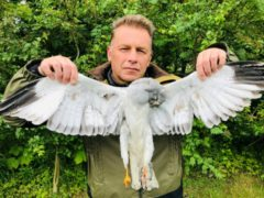Chris Packham with the dead hen harrier (Ruth Tingay)