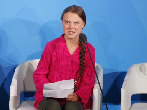 Greta Thunberg addresses the climate action summit in the United Nations General Assembly (Jason DeCrow/AP)