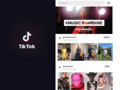 On the app, people share short videos, often set to music (Jamie Harris/PA)