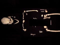 Pieces of the prehistoric Chan Hol 3 skeleton (Jeronimo Aviles Olguín/Plos One)