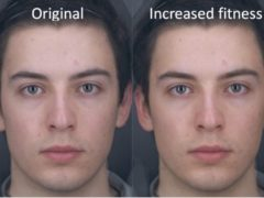 Researchers created an image simulating the change in skin colour (Professor David Perrett/PA)