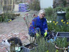 Zoe Ball in her garden (BBC Gardeners' World magazine)