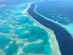 Hardy Reef in Queensland, Australia, showing healthy corals (The Commonwealth Scientific and Industrial Research Organisation)