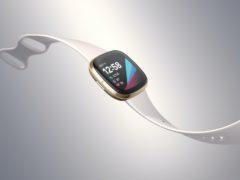 The Fitbit Sense (Fitbit)