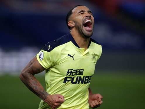 Callum Wilson celebrates scoring (Andrew Couldridge/PA)
