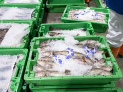 The SNP criticised the fishing provisions of the Brexit deal (Michal Wachucik/PA)